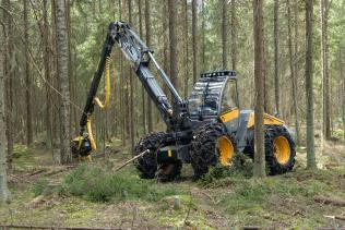 Название: валят лес финск&#1.jpg Просмотров: 1674  Размер: 19.9 Кб